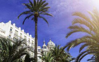¿Qué hacer en un día en Alicante ciudad?