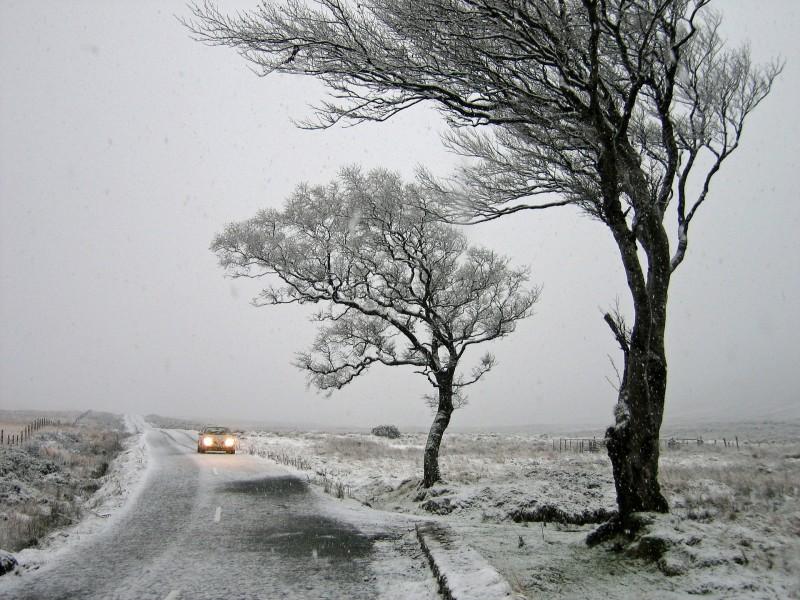 Coche conduciendo con viento fuerte y nive